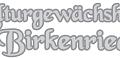 a0000-logo